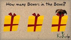 How many Boxers in the boxes do you see?  #boxerdog #boxers #dogs #doggame #doglover #howmany #peekaboo