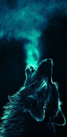 Wolf Wallpaper by - 70 - Free on ZEDGE™ now. Browse millions of popular animal Wallpapers and Ringtones on Zedge and personalize your phone to suit you. Browse our content now and free your phone Iphone Wallpaper Wolf, Tier Wallpaper, Animal Wallpaper, Trendy Wallpaper, Wallpaper Wallpapers, Galaxy Wallpaper, Wolf Love, Animal Totem Loup, Madara Wallpaper