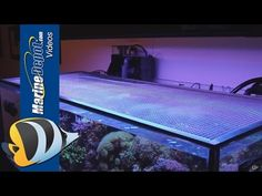 Marine Depot Blog: Tutorial: Make a DIY Screen Top for Your Aquarium