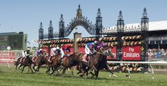 The Melbourne Cup - the biggest horse race in Australia.