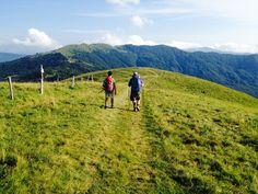 """Along the """"Via del mare"""" path"""