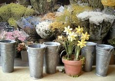 I have been busy making French flower buckets/pails for the past few days. I have photographed them against a photo I found on the internet...