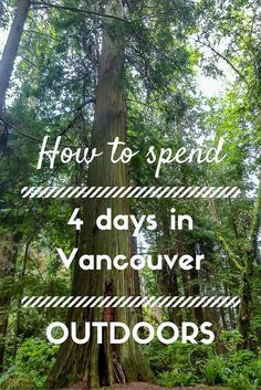 Vancouver has everything - beaches, forests, mountains and more...it showed us how to enjoy outdoors while being in the city. We were thrilled to finally visit one of the most beautiful cities in Canada.: