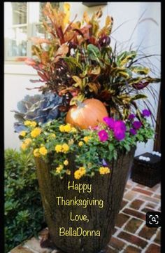 Container gardening is a fun way to add to the visual attraction of your home. You can use the terrific suggestions given here to start improving your garden or begin a new one today. Your garden is certain to bring you great satisfac Luxury Food, We Are The World, Happy Thanksgiving, Editorial Photography, Container Gardening, Red Roses, Garden Design, Bloom, Make It Yourself