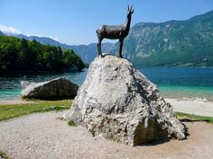 Lake Bohinj, Vintgar  - Slovenia
