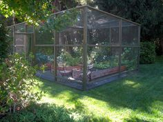 Edible Gardens LA : Photo