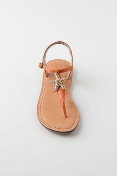 Starfish sandal from Anthropologie thompsonbailey