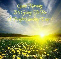 Good morning! via Carol's Country Sunshine on Facebook