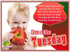 Have A Nice Tuesday day gif good morning tuesday tuesday quotes happy tuesday tuesday images good morning tuesday tuesday quote images
