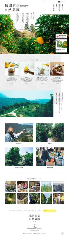 福岡正信自然農園 #レスポンシブWebデザイン One Straw Revolution, Masanobu Fukuoka, Layout Design, Web Design, Modern Agriculture, Ehime, Natural Farming, Environmental Issues, Life Goes On