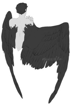 a (mostly) visual reference blog for wings and winged creatures