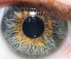 Eye | Iris | Pupil | 目 | œil | глаз | Occhio | Ojo | Color | Texture | Pattern | Macro | My Eye by Michael Mckinney