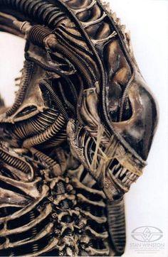 omegamorph: Miscellaneous photos of the Aliens... • fuck yeah xenomorphs