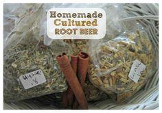 Homemade Cultured Root Beer Recipe