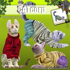 Knitted Sweater and Jeans for Cats by Catcorp My Sims, Sims Cc, The Sims 3 Pets, Sims 3 Mods, Download Cc, Free Sims, Sweaters And Jeans, Geek Stuff, Cat Stuff