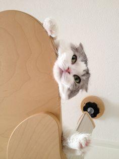 hey...down there....watcha doin'.....