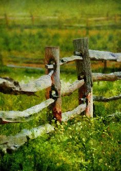 Farm - Fence - The Old Fence Post by Mike Savad Country Fences, Rustic Fence, Farm Fence, Fence Gate, Country Roads, Fencing, Horse Fence, Dog Fence, Split Rail Fence