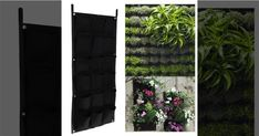 Hanging Plants, Potted Plants, Flower Pots, Flowers, Balcony Garden, Planter Pots, Home And Garden, Green, Wall