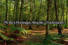 fly like a mockingjay, sting like a trackerjacker
