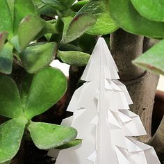 I guess this tree shouldn't be here... #1origamiaday #origami #florigami #pinetree