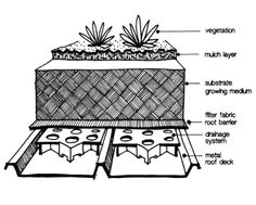 living roof construction | Types Of Construction - Adelaide City Council