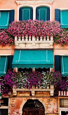 Flowers dominate the window ledge of an old building in Murano, an island in Venetia well known for its glass manufacturing.