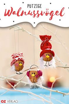 Crafts with walnuts: Christmas winter birds familie.de- The cute winter birds made of walnuts dangle from the branch with their ear warmers and hats and spread a winter Christmas mood. Christmas Mood, Christmas Holidays, Christmas Crafts, Christmas Ornaments, Winter Holiday, Tree Decorations, Christmas Decorations, Holiday Decorating, Artisanal
