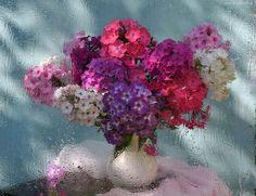 Wazon, Bukiet, Kwiatów, Okno, Deszcz