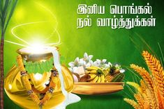 pongal wishes messages sms in Tamil Happy Pongal In Tamil, Pongal Wishes In Tamil, Tamil Greetings, Happy Lohri Images, Pongal Images, Make Happy, Are You Happy, Pongal Festival Images, Wishes Messages