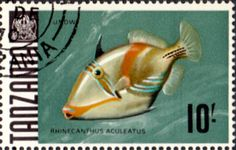 Tanzania 1967 Fish Fine Used SG 156a Scott 33 Other Tanzania and British Commonwealth Stamps HERE!