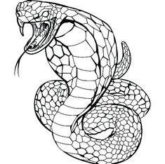 King Cobra Coloring Page - 28 King Cobra Coloring Page , King Snake Coloring Page Twisty Noodle Snake Coloring Pages, Batman Coloring Pages, New Year Coloring Pages, Online Coloring Pages, Coloring Pages For Girls, Mandala Coloring Pages, Coloring Pages To Print, Coloring For Kids, Coloring Sheets