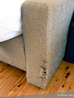 How To Repair A Cat Scratched Chair Or Sofa Pinterest