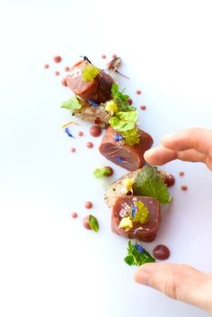 Tuna, Smoked Duck, Toiko Caviar, and Mackerel - Alexandre Silva - The ChefsTalk Project