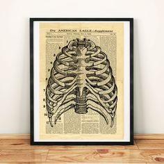 Human Skeleton Thorax Bones Antique Anatomy Vintage Printable Collage Old Newspaper Art Print Newspaper Wall, Vintage Newspaper, Printable Designs, Printable Crafts, Human Skeleton, West Art, Floral Skull, Dictionary Art, Beautiful Wall