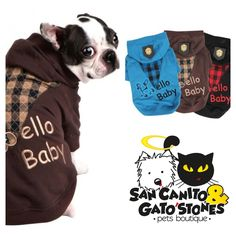 De la moda... San Canito #Pet #Dog #Fashion