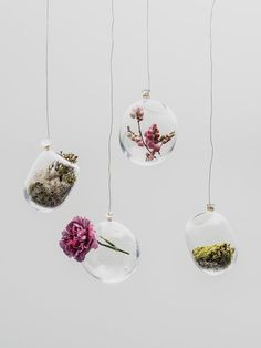 Hanging Garden glass pots by Milla Vaahtera. Available at www.uumarket.fi - UU Market: Home of New Finnish Design.