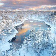 Winter Wonderland   Photo by Jan Lepamaa