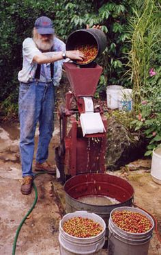 """An American Coffee Farmer in Puerto Rico (2).  Coffee plantation/jams and jellies/nature tour Finca del Seto Owners We're originally from Chicago, but left there in 1973 onboard our old wooden sloop named the Warlock. We sailed her down to the Caribbean in 1976 and lived onboard her until 1986 when we """"traded"""" her in for the finca here in Jayuya. I suppose we're not the most conventional couple you'll ever meet – but we love & value our farm and treat the land and its traditions with…"""