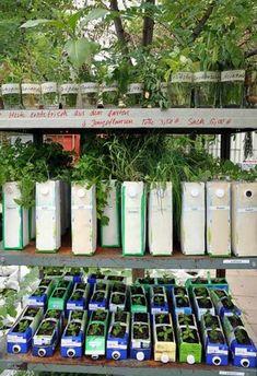 Tetra pack up cycling Jardin Vertical Diy, Vertical Garden Diy, Recycled Garden, Recycled Crafts, Milk Carton Crafts, Urban Agriculture, Permaculture Design, Growing Gardens, Little Gardens