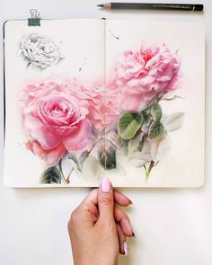 Pastel Watercolor, Watercolor Paintings, Watercolor Techniques, Botanical Drawings, Art Courses, Artist Sketchbook, Watercolor Illustration, Pencil Art, Flower Art