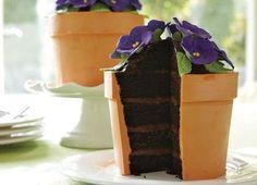Blooming flower pot cake - it fooled me! #baking #cake