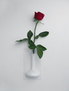 Cool Wall Flower Vase