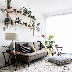 This Collingwood apartment has turned into an urban oasis with the help of plants, plants and more plants! #tinyjungle #reallivingmag