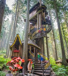 Your Childhood Dream Tree Houses 57