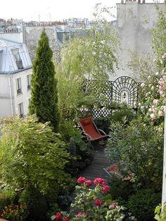 Blog de terrasse :UN JARDIN SUSPENDU A PARIS, les oiseaux nous aident