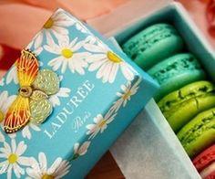 Laduree macarons box