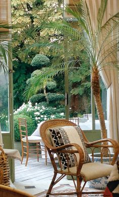 I love this colonial chair, with potted palms, a great idea for the new space
