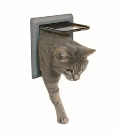 Trixie 38602 2Way Cat Flap Grey *** Learn more by visiting the image link.