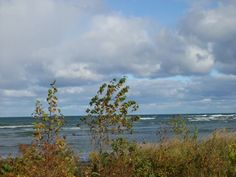 Path  to Cana Island in Door County Wi