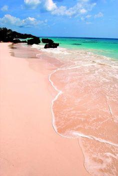 .Pink sand beach, Bermuda